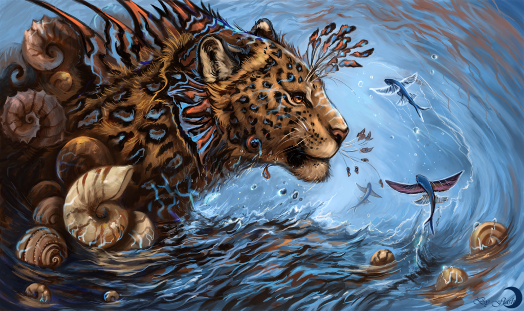 Nautilus Leopardus