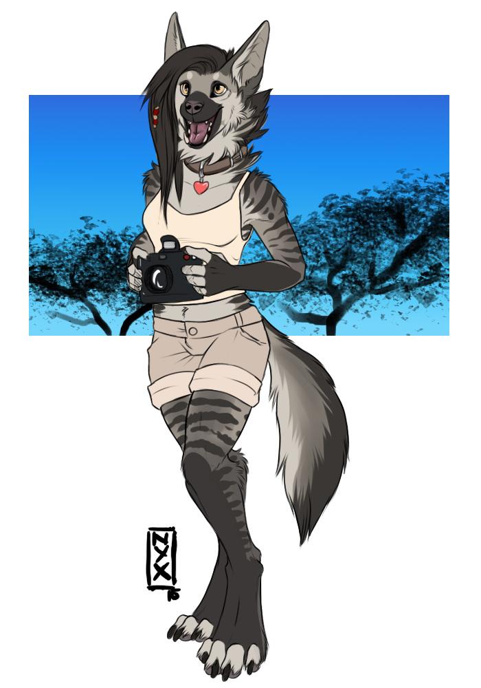 Aardwolf-Safari