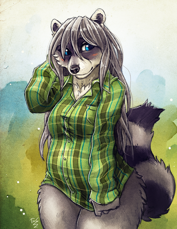 Shy Raccoon