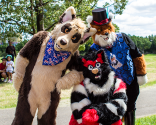 March Meet: Furry Friends