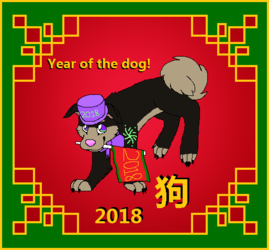 Year of the dog! 2018!