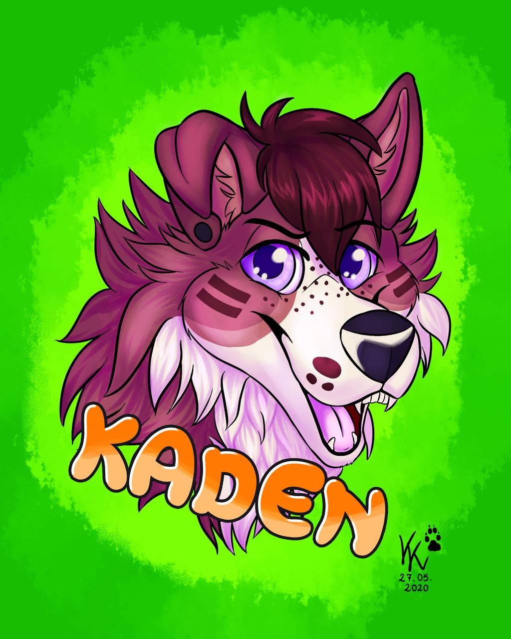Kaden Headshot