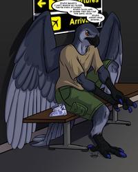 Bird World Problems: Security