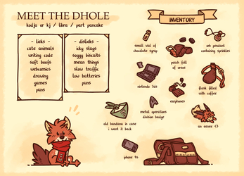 Meet the dhole