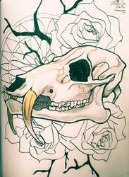 water deer skull