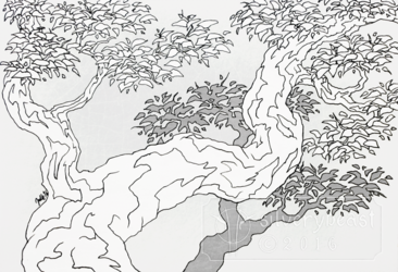 Inktober #3 | Branches