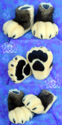 Denali Paws
