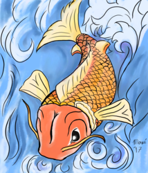 Koi in orange and blues