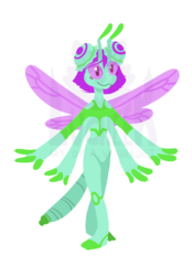Dragonfly Adoptable