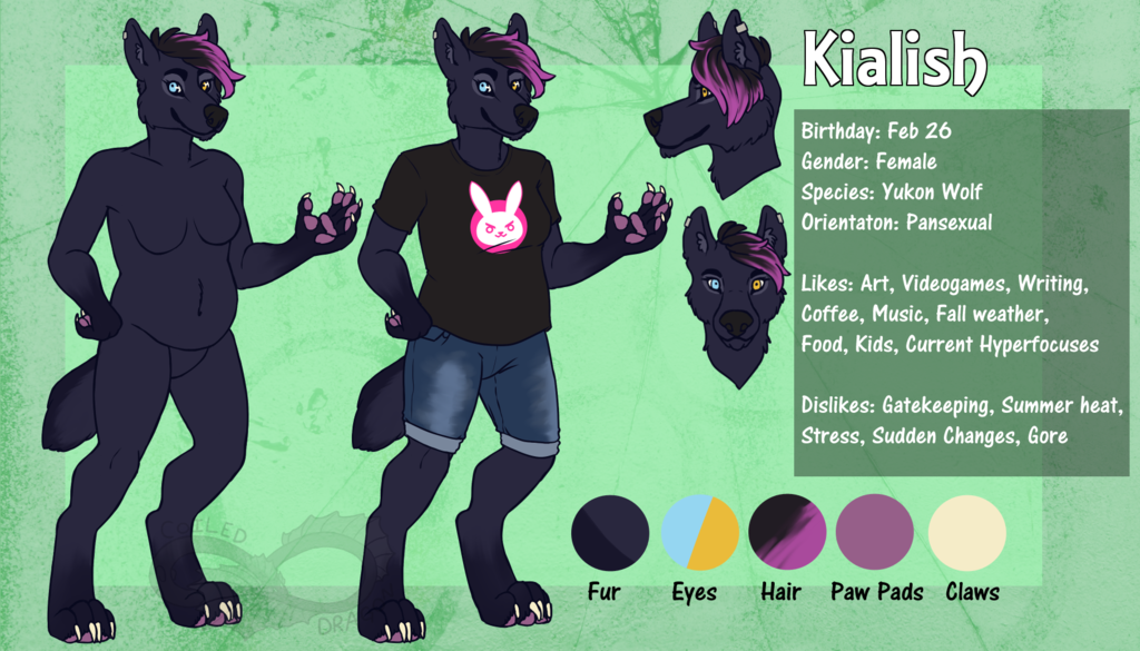 Most recent image: Kialish Ref Sheet 2018