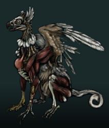 Zombie Gryphon