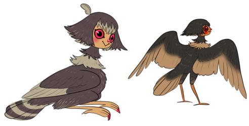 harpy concept