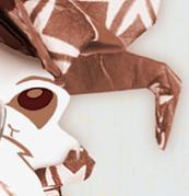 Origami Squirkara