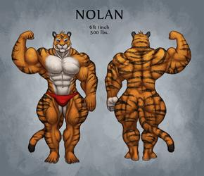 Nolan Ref Sheet