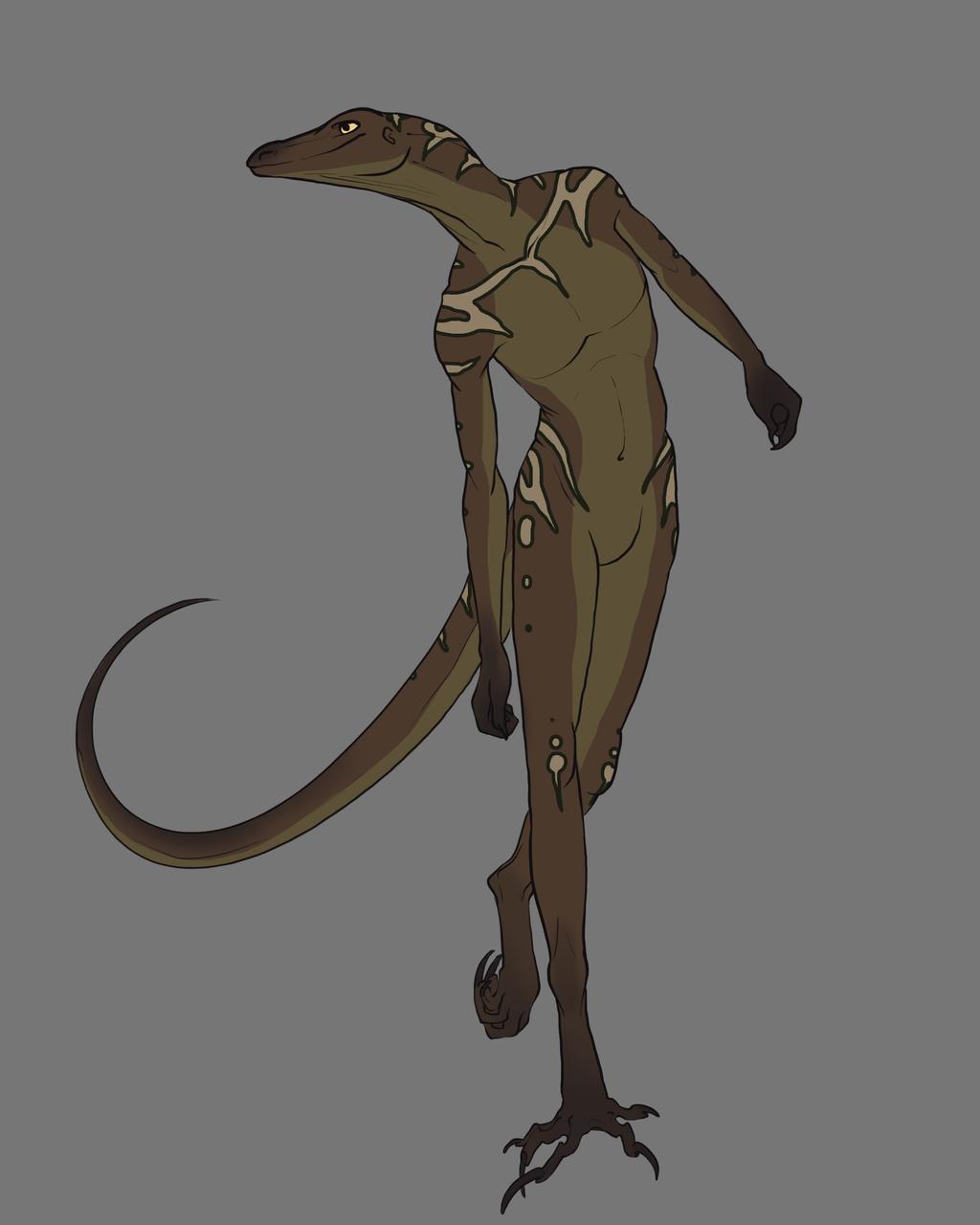 Most recent image: lizard