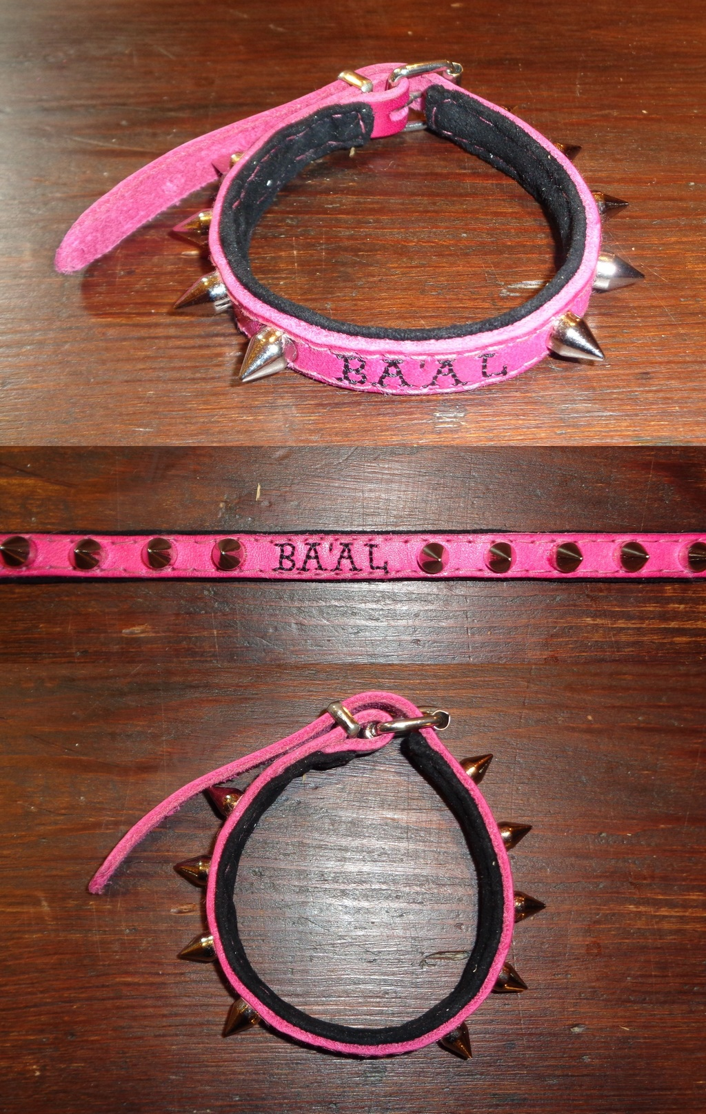 Cat Collar for Aturu