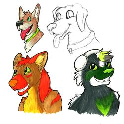 Marker /sketch doodles