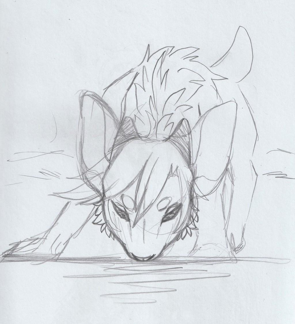 Shiro at the river