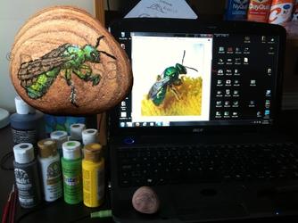 Iridescent Honey Bee
