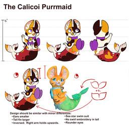 Calicoi final concept