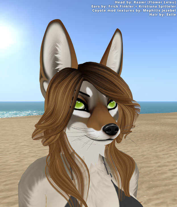 Raawr Coyote Mod (coming soon)