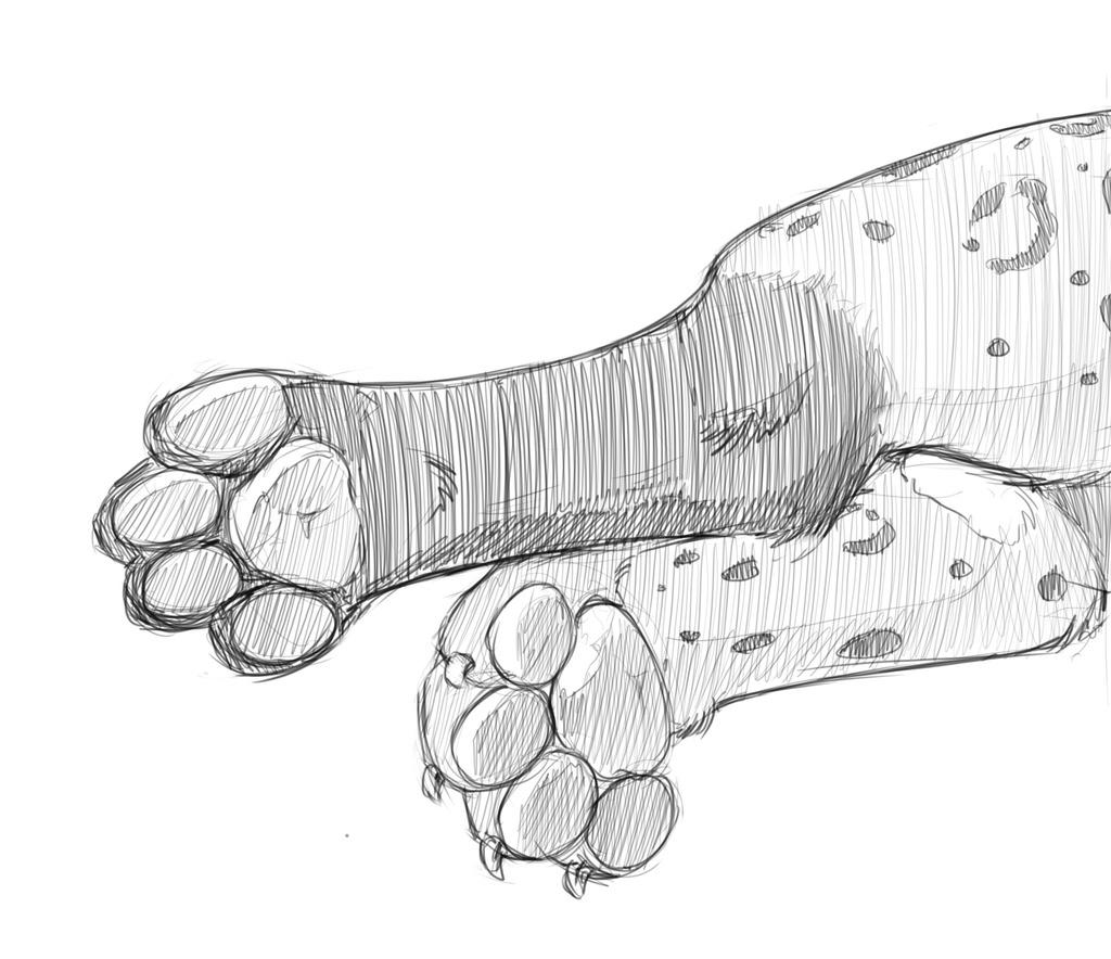 Blackspots's Paws