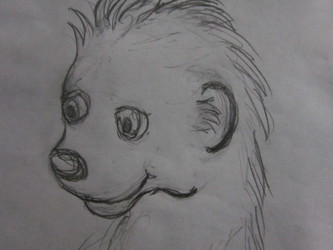 Cub Sketch of Moyo Mongoose