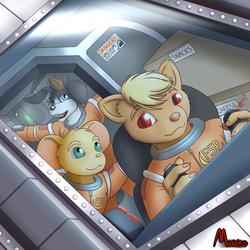 Furball Space Program (art)