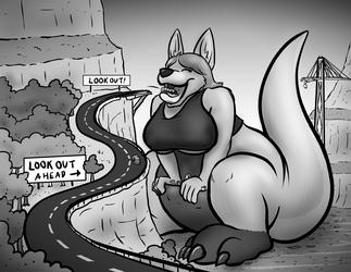 Kangaroo Crossing Ahead...
