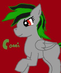 Canni Pony