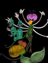 Reginald's Lilium