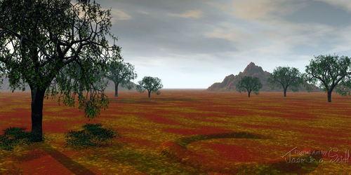 Landscape 007