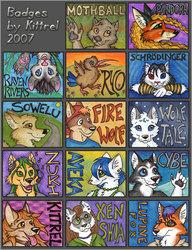 2007 Badges
