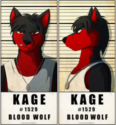 Police Line Up - Kage