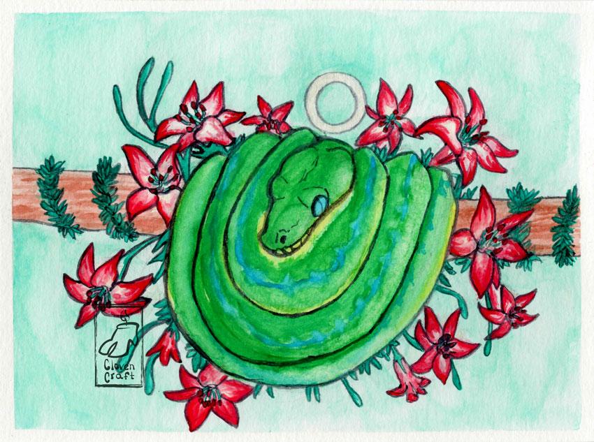 Green Tree Python (Circle)
