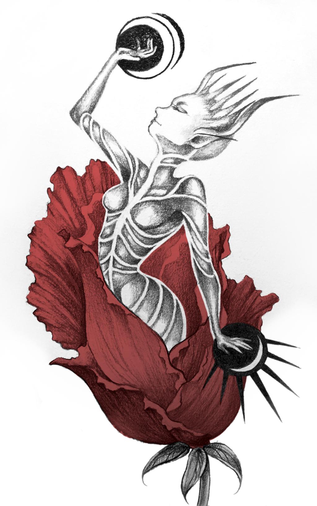 Most recent image: Rebirth