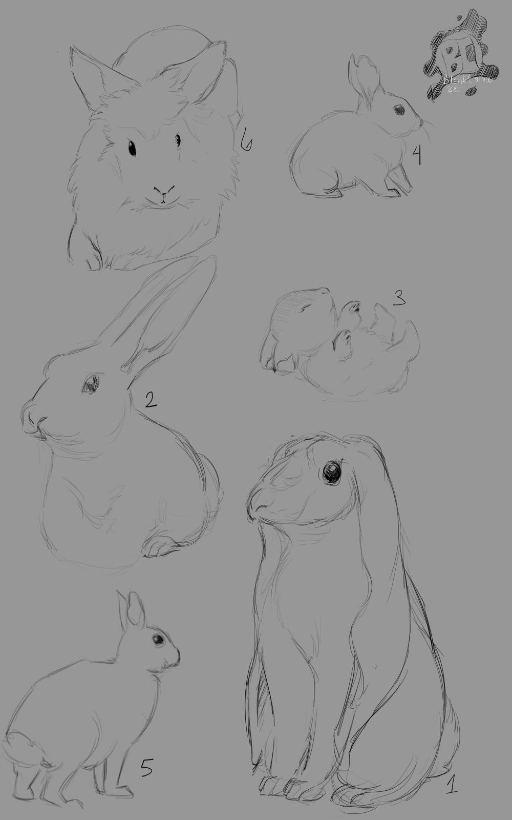 sketch rabbit concepts u2014 weasyl