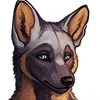 avatar of Lennon-Surcot