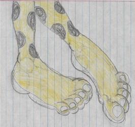 Kathy the Cheetah Footshot