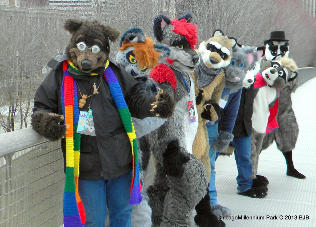Fursuiters at Chicago's Millennium Park