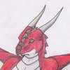 Avatar for Dragi Redwing