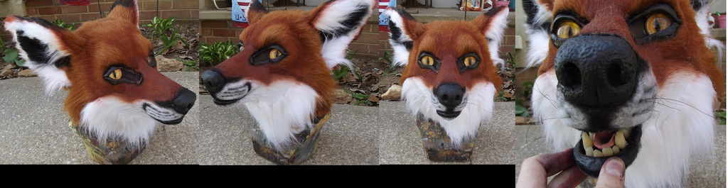 Realistic fox head