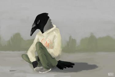 Airfield crow