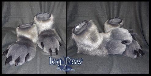Hyena feet paws