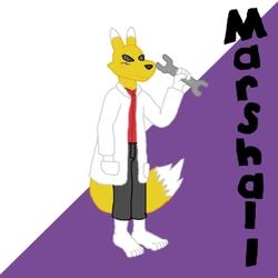 Marshall Profile
