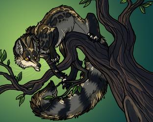 Aranur × Linsang = Linwolf