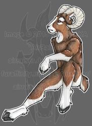 Original: Male Ram 2015