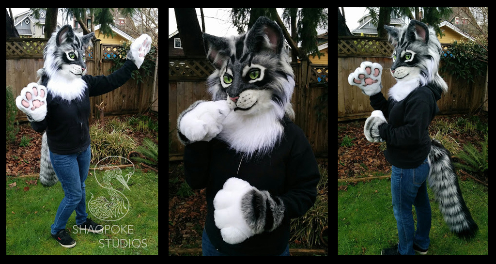 Tabby Partial - Sold @VF2016