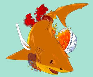 Shark soup Is Wrong!
