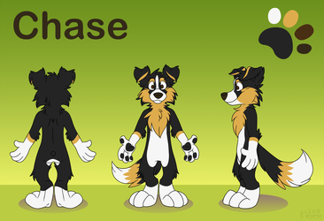 [C]Chase reference sheet